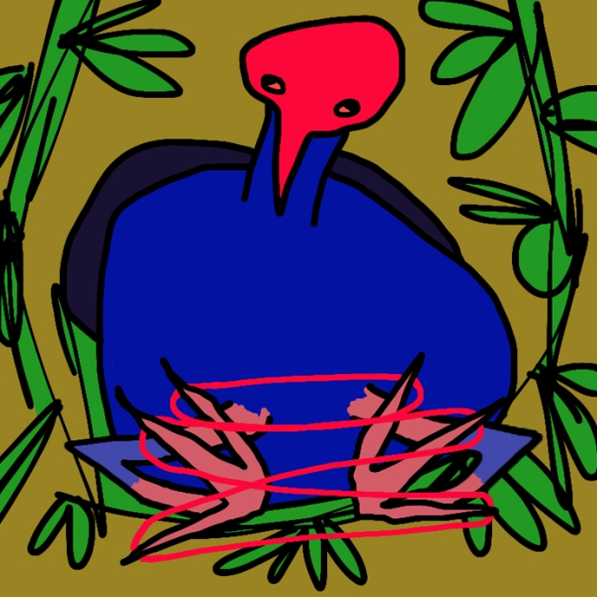 Pukeko doing a cat's cradle
