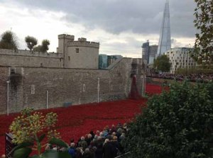 tower of london and ceramic poppies