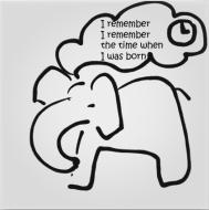 elephant clock